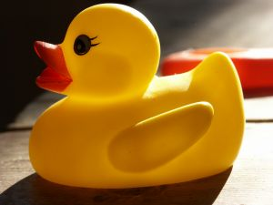 household%20bath%20rubber%20duck%20toy.jpg