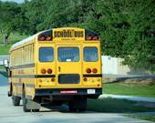 school%20bus%20rear%20view.jpg