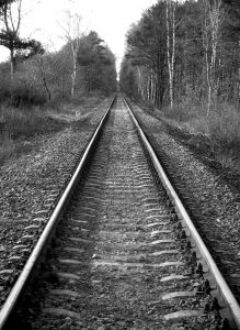 train%20railroad%20tracks%20black%20and%20white%20in%20rural%20area%20with%20trees.jpg